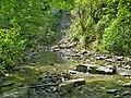 Сочинский национальный парк. Ручей Свирский.jpg