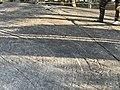 Участок под куполом с высеченными петроглифами на о. Скалистый.jpg
