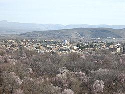 نمای از باغات ارسنجان.jpg