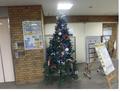 中央本町クリスマスツリー.png