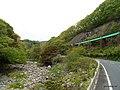 夏井川 - panoramio.jpg