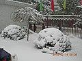 安徽省含山县含城春节雪景 - panoramio - luchangjiang~鲁昌江 (3).jpg
