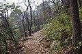 山路 - panoramio (48).jpg