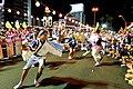 徳島県徳島市 自由な阿波踊り.jpg
