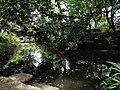 西泠印社池塘.jpg