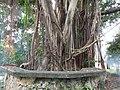 02993jfMowelfund Plaza Museum Film Institute Zamboanga Quezon Cityfvf 04.jpg