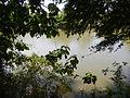 07976jfPampanga River banks Candelaria Boats Fish Delta Bulacan Roadsfvf 03.JPG