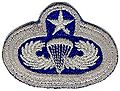 11th Badge.jpg