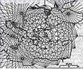 1311 portolan of Pietro Vesconte.jpg