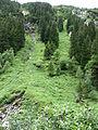 1487 - Nationalpark Hohe Tauern - Krimmler Wasserfälle.JPG