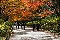 171125 Kobe Municipal Forest Botanical Garden08s.jpg