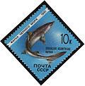 1991 CPA 6281.jpg