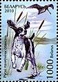 2010. Stamp of Belarus 39-2010-11-02-m1.jpg