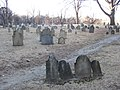 2010 CentralBuryingGround BostonCommon 4388731651.jpg