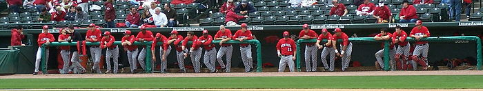 2010 Georgia Bulldogs Baseball team