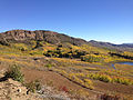 2014-10-04 14 16 01 View of Subalpine Firs, Aspens during autumn leaf coloration and a pond from Charleston-Jarbidge Road (Elko County Route 748) in Copper Basin about 11.9 miles north of Charleston, Nevada.JPG