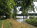 20140724Hochwasser Altlussheim16.jpg