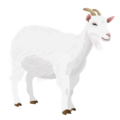201408 goat.png