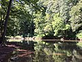 2017-08-19 10 56 47 View southeast down Bull Run from the Bull Run-Occoquan Trail between the Red Trail and the Yellow Trail within Hemlock Overlook Regional Park, in southwestern Fairfax County, Virginia.jpg