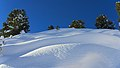 2017.01.20.-25-Paradiski-La Plagne-Piste unter Lift Colorado--unberuehrter Schnee.jpg