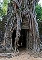 20171127 Ta Som Angkor 5177 DxO.jpg