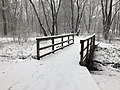 2018-03-21 08 41 40 View along a snow-covered walking path as it crosses a bridge in the Franklin Farm section of Oak Hill, Fairfax County, Virginia.jpg