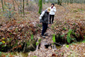 2018-12-22-December-watercolors.-Hike-to-the-Ratingen-forest. File-24.png