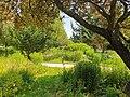 20210620 Donaupark Heidegarten 02.jpg