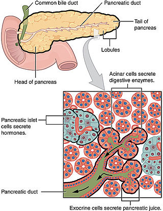 how to avoid cancer in the pancreas