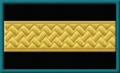4-07. Служащий Мариинского ведомства, не имеющий классного чина, 1896–1910 гг.png