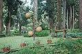 558, Taiwan, 南投縣鹿谷鄉內湖村 - panoramio (39).jpg