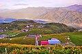 983, Taiwan, 花蓮縣富里鄉新興村 - panoramio (23).jpg
