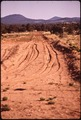 "ACCESS ROAD TO NEW DEVELOPMENT, THE ""GRAND CANYON"" ESTATES - NARA - 544178.tif"