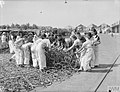 ALLIED WOMEN REPAIR NAVAL GEAR IN MEDITERRANEAN PORT. 6 AND 7 OCTOBER 1943, BEIRUT. SOME 150 GIRLS OF LEBANESE, ARMENIAN, GREEK, AND OTHER NATIONALITIES ARE WORKING FULL TIME FOR THE ROYAL NAVY. CLEANING AND PA A20014.jpg