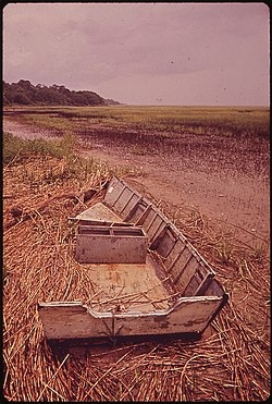 AN OLD BOAT ROTS IN A MARSH ON ST. SIMON'S ISLAND - NARA - 547017.jpg