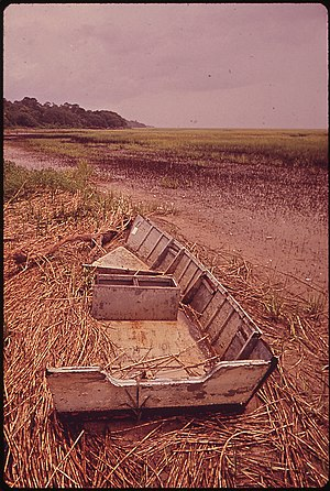 Igbo Landing - The marshes of St. Simons Island