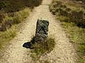 A boundary stone on the Cleveland Way - geograph.org.uk - 203227.jpg