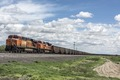 A long, passing freight train near Avondale in rural Pueblo County, Colorado LCCN2015632763.tif