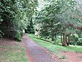 A path through the grounds of the University of Exeter - geograph.org.uk - 1403179.jpg