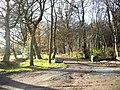 A woodland walk - geograph.org.uk - 1590138.jpg