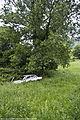 Abandoned Peugeot 505 (5869370757).jpg