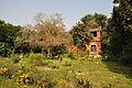 Acharya Jagadish Chandra Bose Indian Botanic Garden - Howrah 2011-01-08 9802.JPG