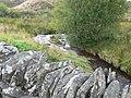 Afon Brenig from Pont-y-Brenig - geograph.org.uk - 982829.jpg