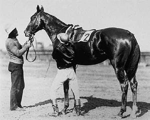 1905 Kentucky Derby - 1905 Kentucky Derby winner Agile