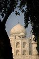 Agra, India Taj Mahal (368617474).jpg