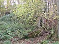 Air raid shelter Whithington woods - geograph.org.uk - 1559692.jpg