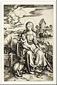 Albrecht Dürer - Virgin and Child with the Monkey - Google Art Project.jpg