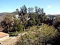 Alcoutim (Portugal) (32402472664).jpg