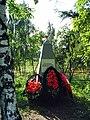 Alexandrov, Vladimir Oblast, Russia - panoramio - spam00 (16).jpg