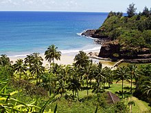 Merveilleux Palm Trees And River Into Ocean · Allerton Garden On Kauaʻi Island. The National  Tropical Botanical ...